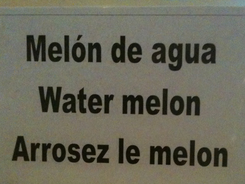 Traduction de water melon